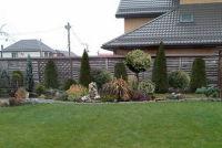 Как правильно сажать деревья рядом с забором