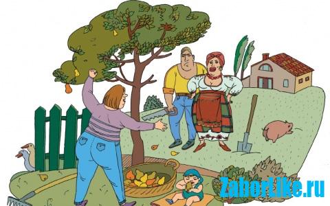 Дерево и соседи