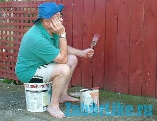 когда нужно красить забор